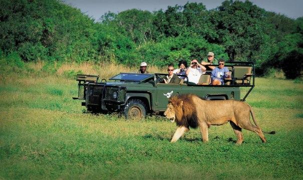 Africa do Sul (1)